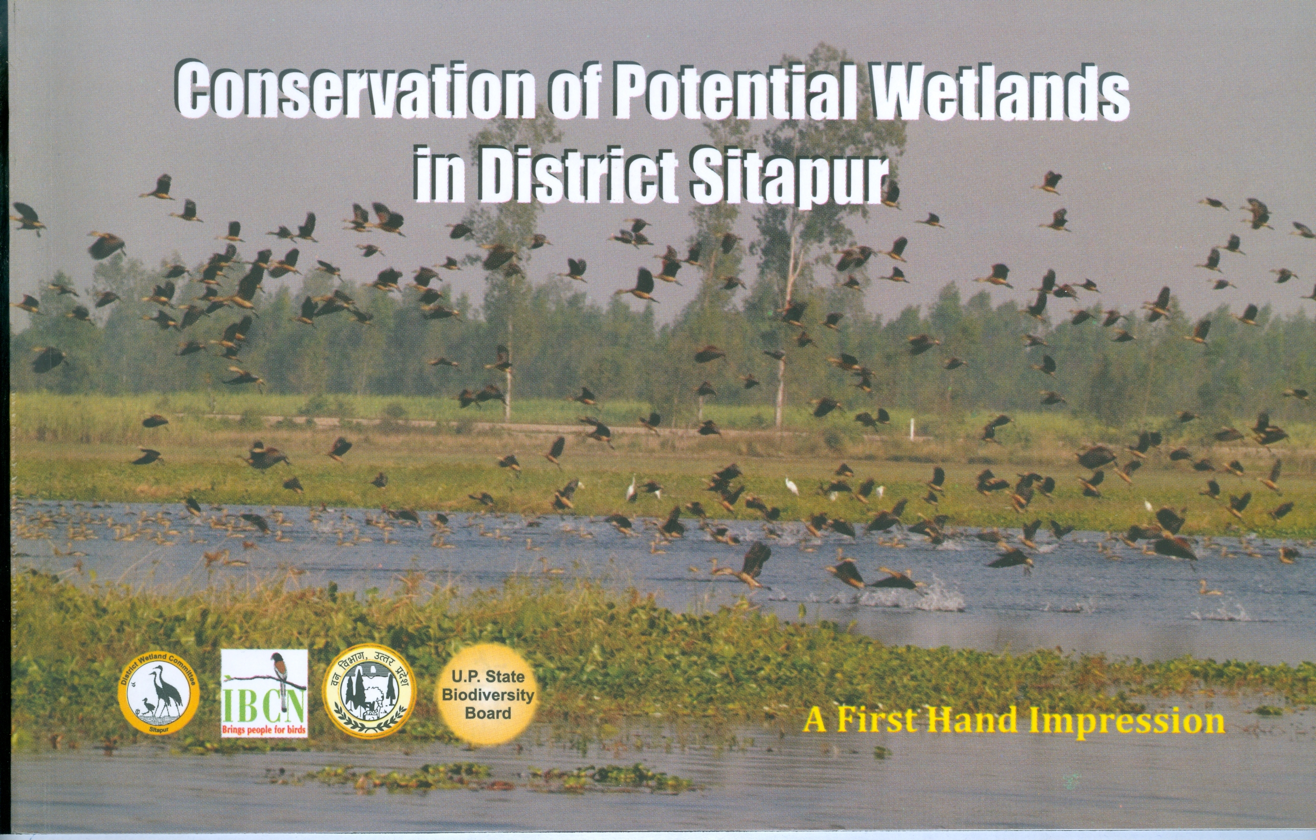 Conservation of Potential Wetlands in Sitapur