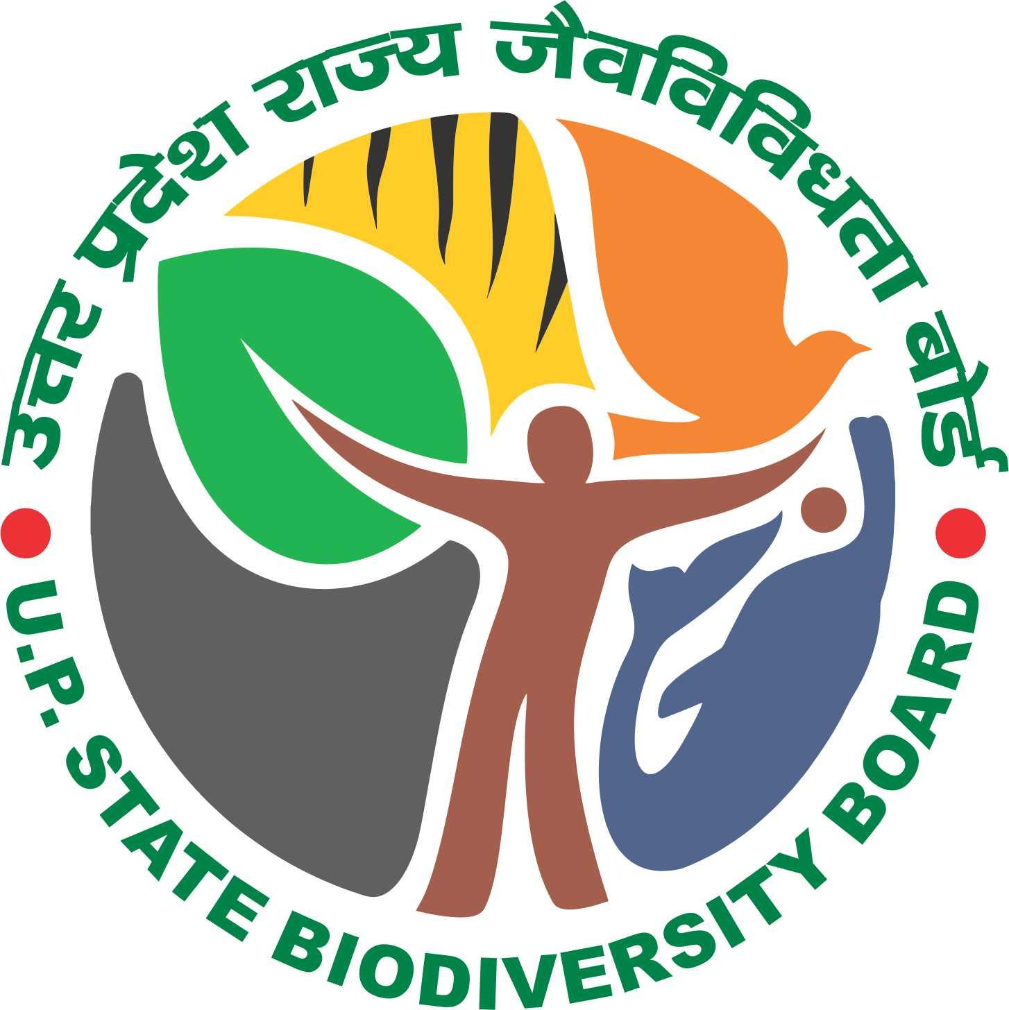 urbanization biodiversity and conservation pdf