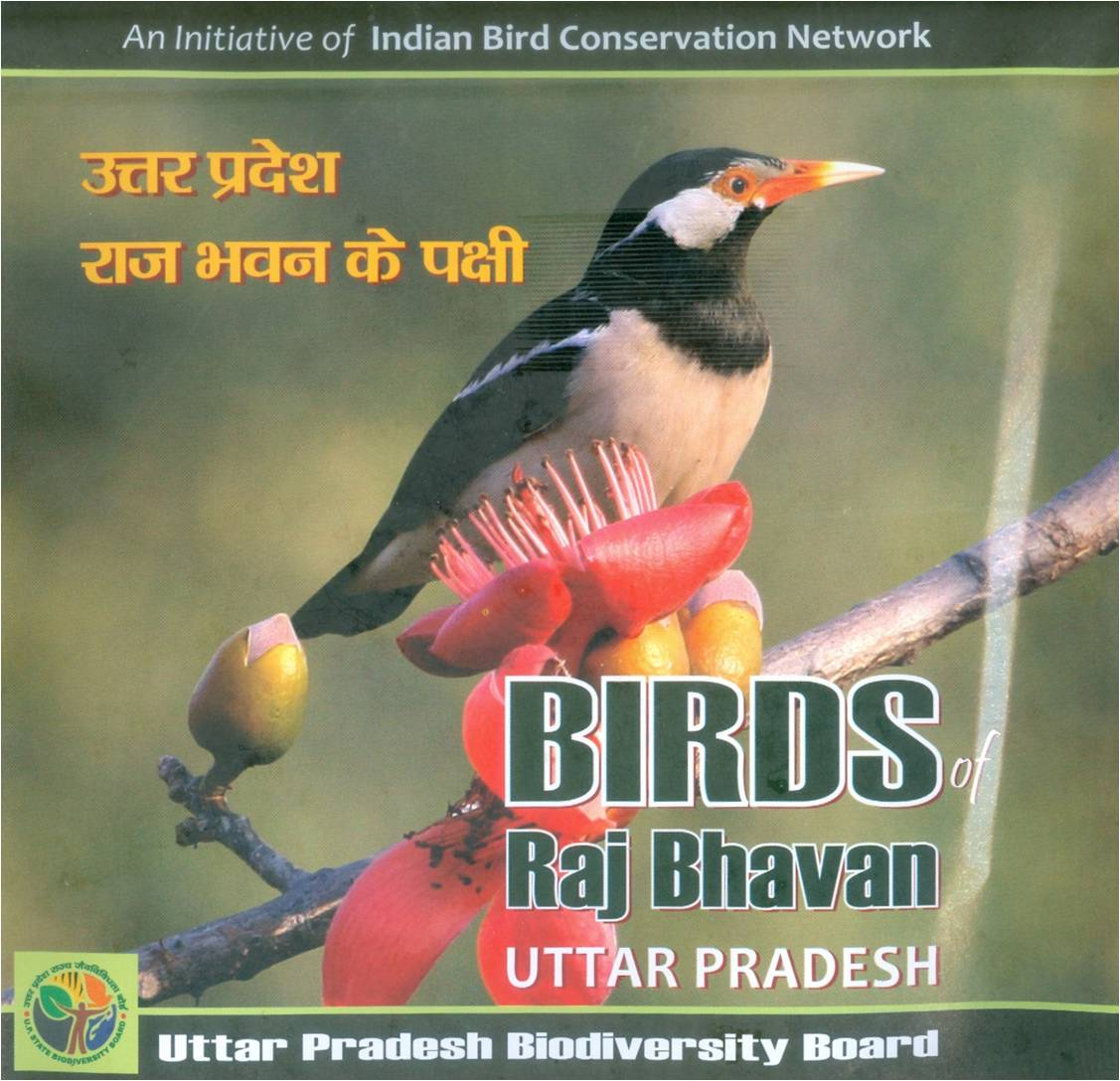 Birds of Raj Bhavan