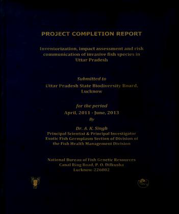 Completed project report
